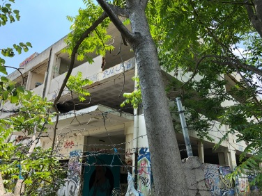 Barbed wire, trees, graffiti and abandoned building from Antheon Street.